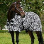 Over het paard dat een zebra moest zijn